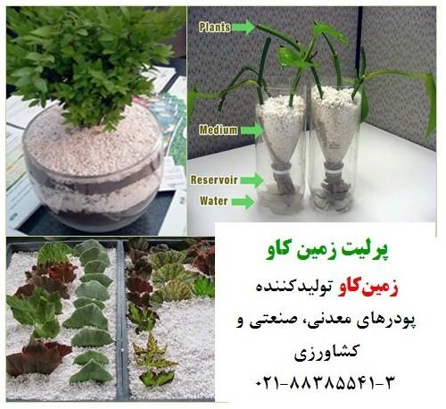 مزایای استفاده از پرلیت در کشاورزی
