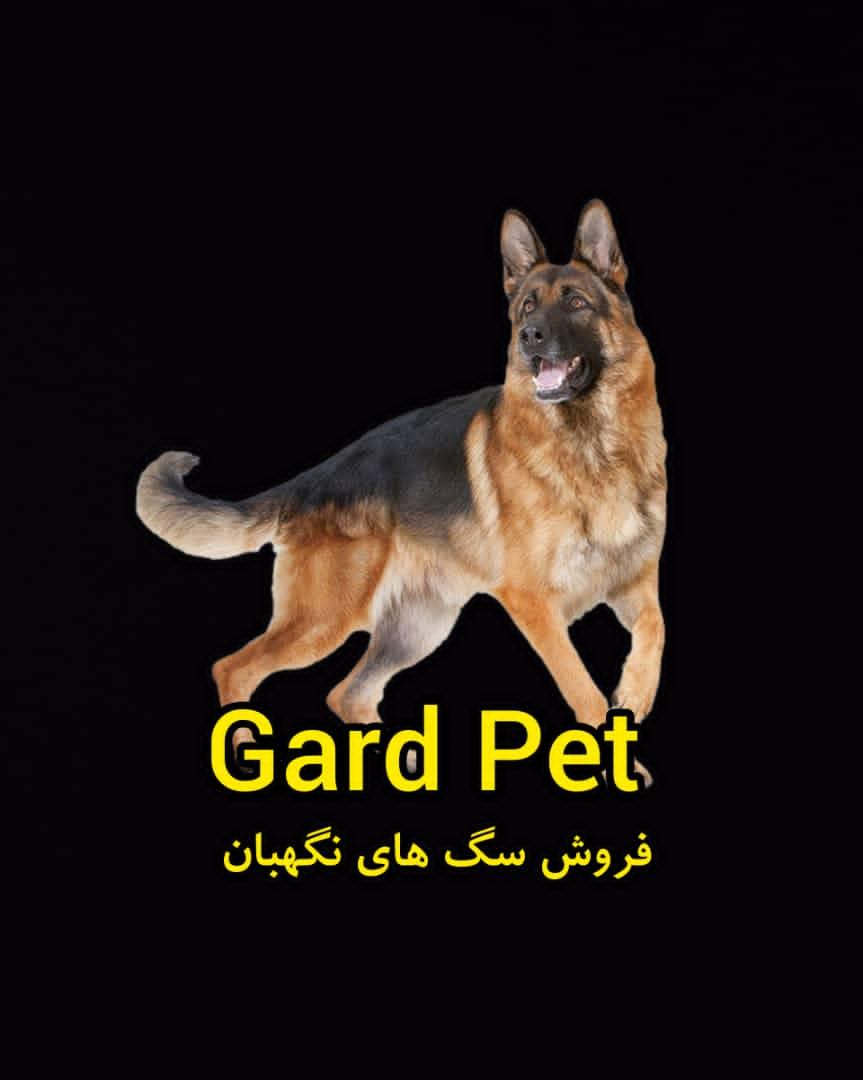 خرید و فروش انواع سگ نگهبان